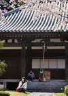 Jindoji0510