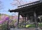 Jindoji0710