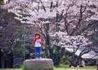 Kizugawa01