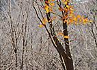 Touji20125_002