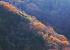 Touji20128_003
