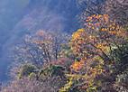 Touji20129_002