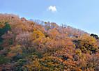 Touji20129_003