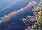 Touji20128_002_2
