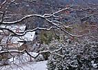 Yukiujitawara901