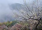 Kirikouno201_02